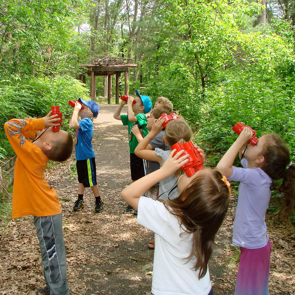 Summer Camps: Summer Camps At Beaver Creek Reserve